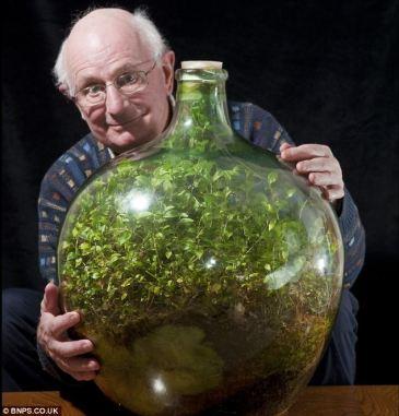 Bottle Garden 2