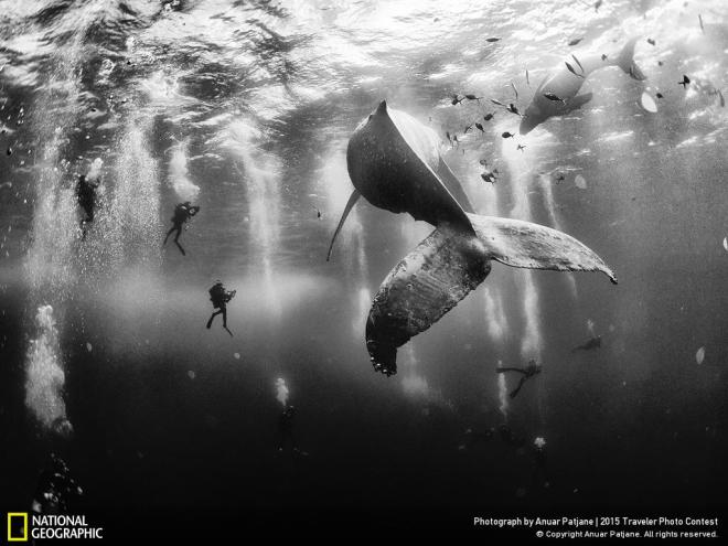 Winner of the 2015 Traveler Photo Contest. Credit: Anuar Patjane