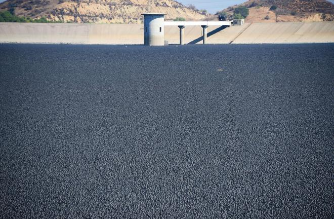 The Los Angeles Department of Water and Power released 96 million black shade balls into the Los Angeles Reservoir to reduce evaporation and deter algal growth. PHOTOGRAPH BY GENE BLEVINS, LA DAILY NEWS/ZUMA WIRE/CORBIS